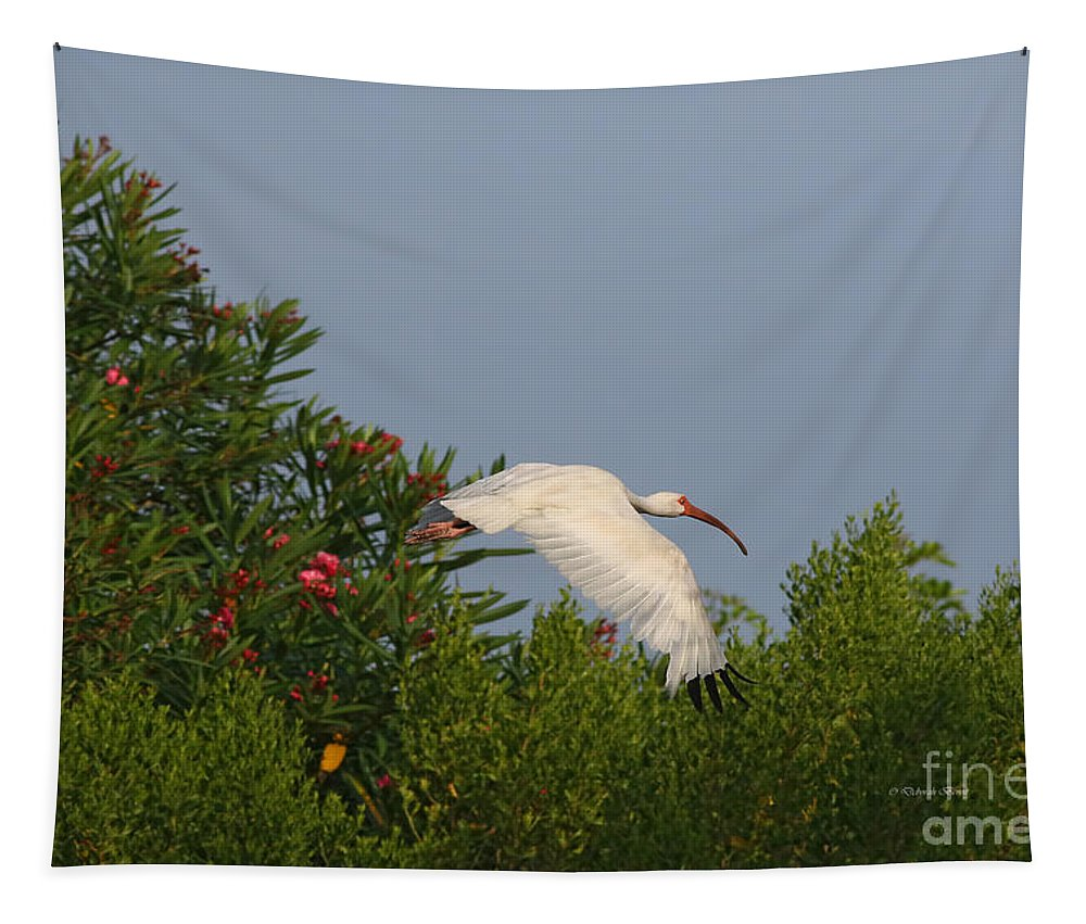 Deborah Benoit Tapestry featuring the photograph Ibis In The Oleander by Deborah Benoit