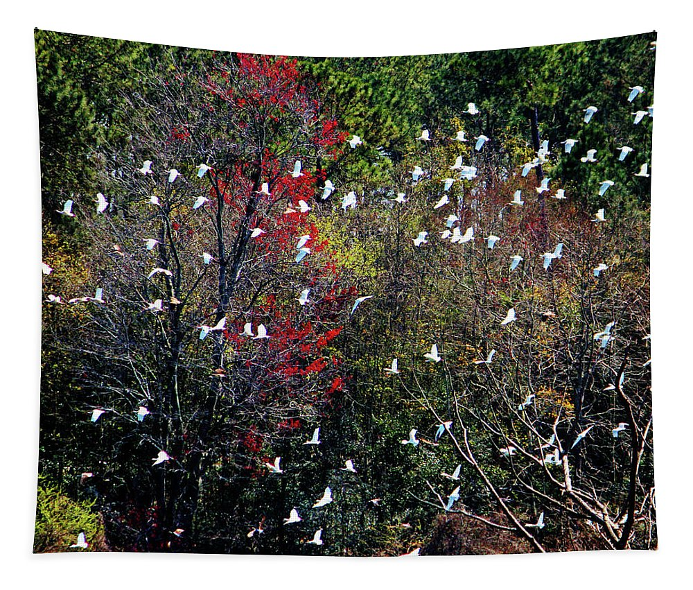 White Ibises Tapestry featuring the photograph Ibises In Flight by Cynthia Guinn