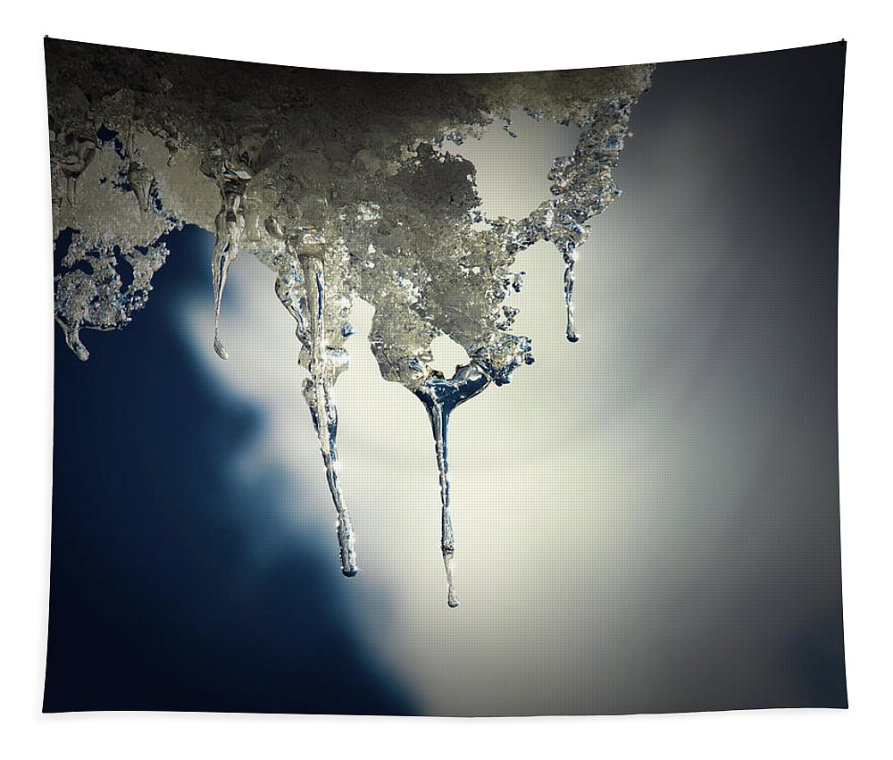 Tapestry featuring the photograph Ice Photo 4 by Barry King