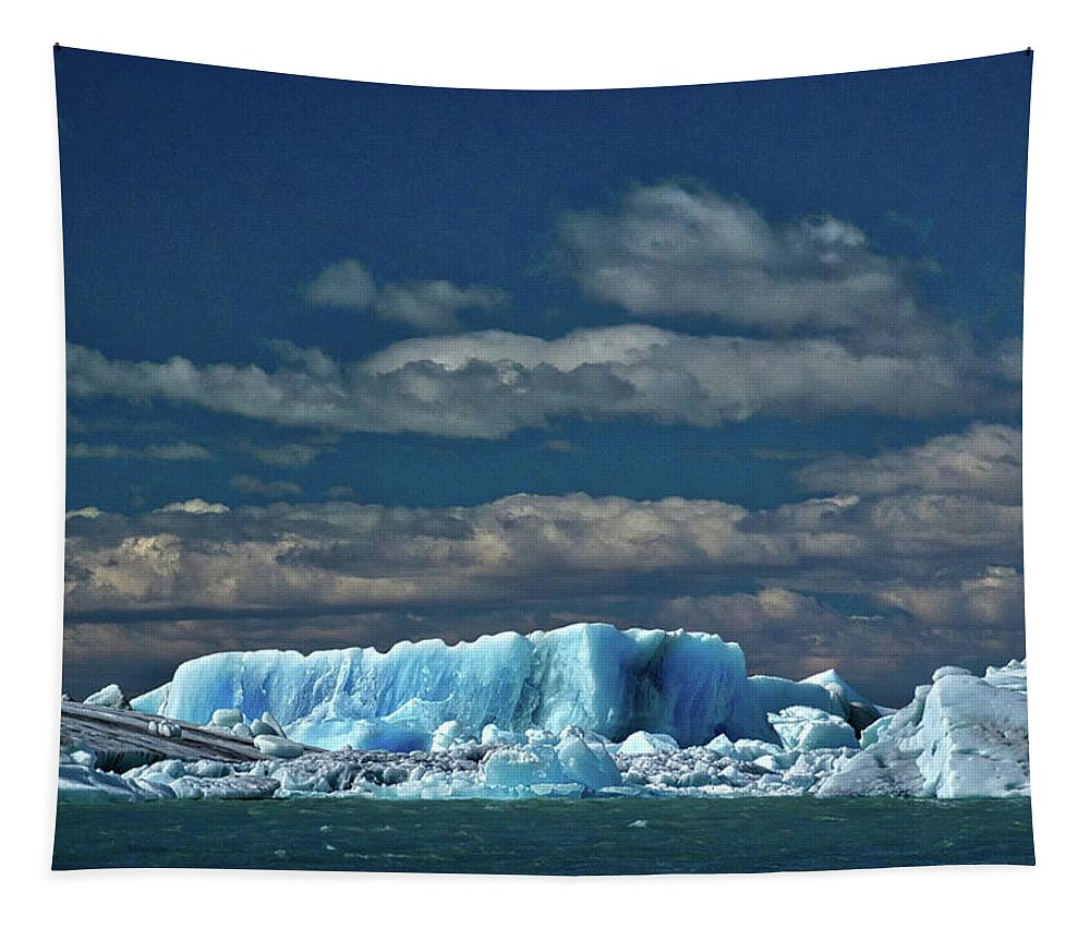 Patagonia Tapestry featuring the photograph Iceberg In Viedma Lake - Patagonia by Stuart Litoff