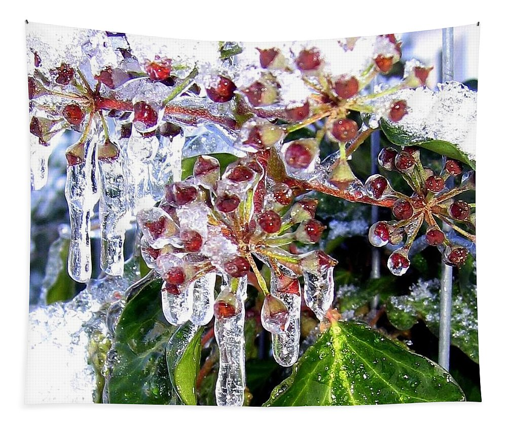 Iced Ivy Tapestry featuring the photograph Iced Ivy by Will Borden