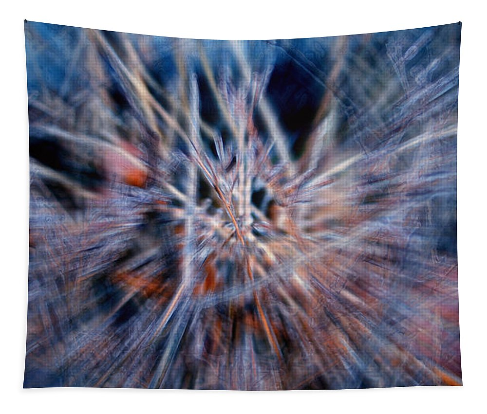 Abstracts Tapestry featuring the digital art I'm Dreaming by Linda Sannuti