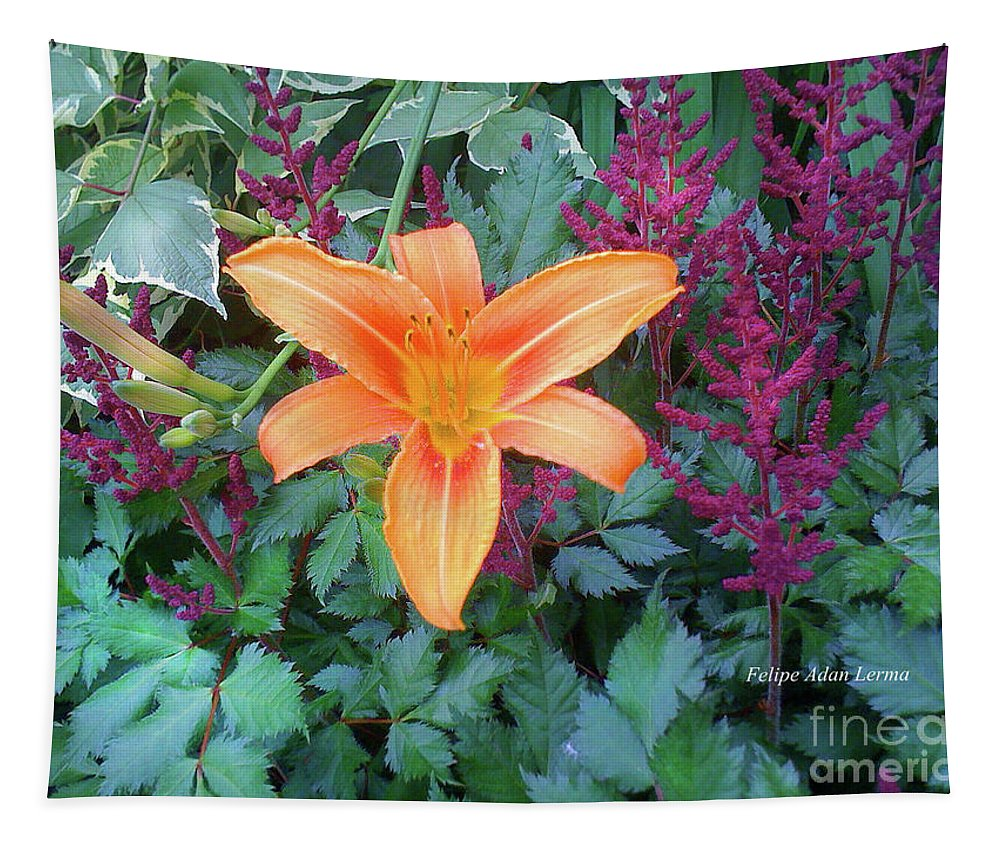 Image In Novel Tapestry featuring the photograph Image Included In Queen The Novel - Late Summer Blooming In Vermont 23of74 Enhanced by Felipe Adan Lerma