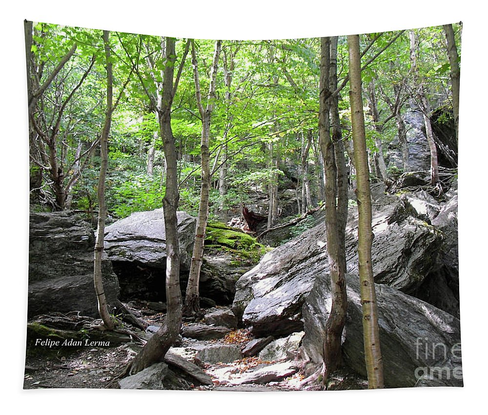 Novel Tapestry featuring the photograph Image Included In Queen The Novel - Rocks At Smugglers Notch by Felipe Adan Lerma