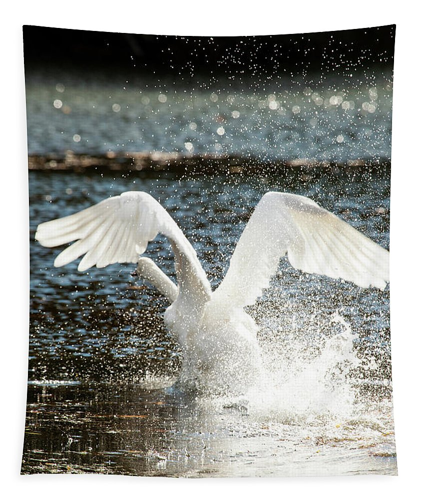 In A Splash Tapestry featuring the photograph In A Splash by Karol Livote