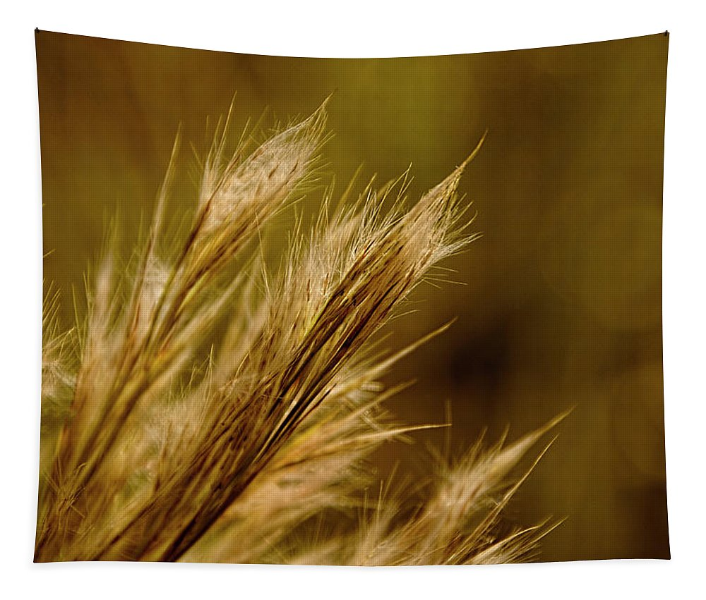 Plant Tapestry featuring the photograph In An Autumn Field - Golden Macro by Mitch Spence