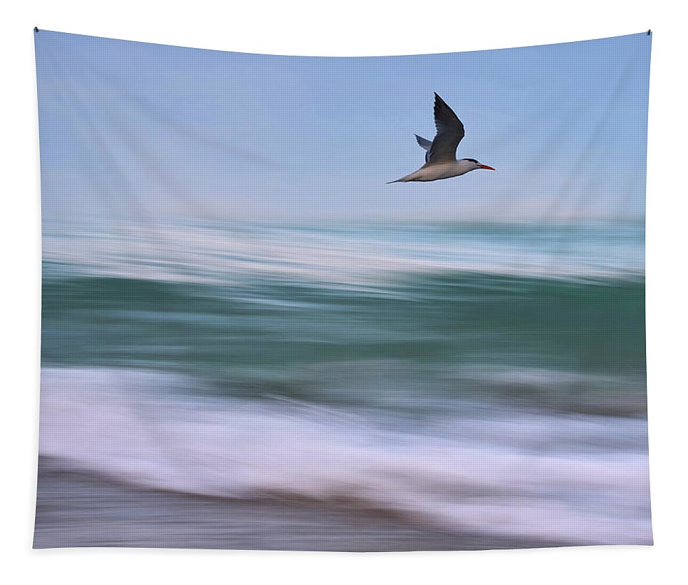 Tern Tapestry featuring the photograph In Flight by Laura Fasulo