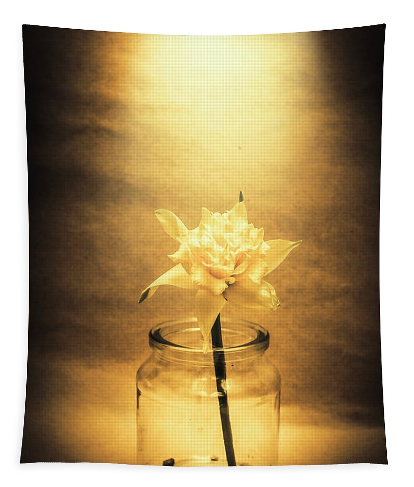 Flower Tapestry featuring the photograph In Light Of Nostalgia by Jorgo Photography - Wall Art Gallery