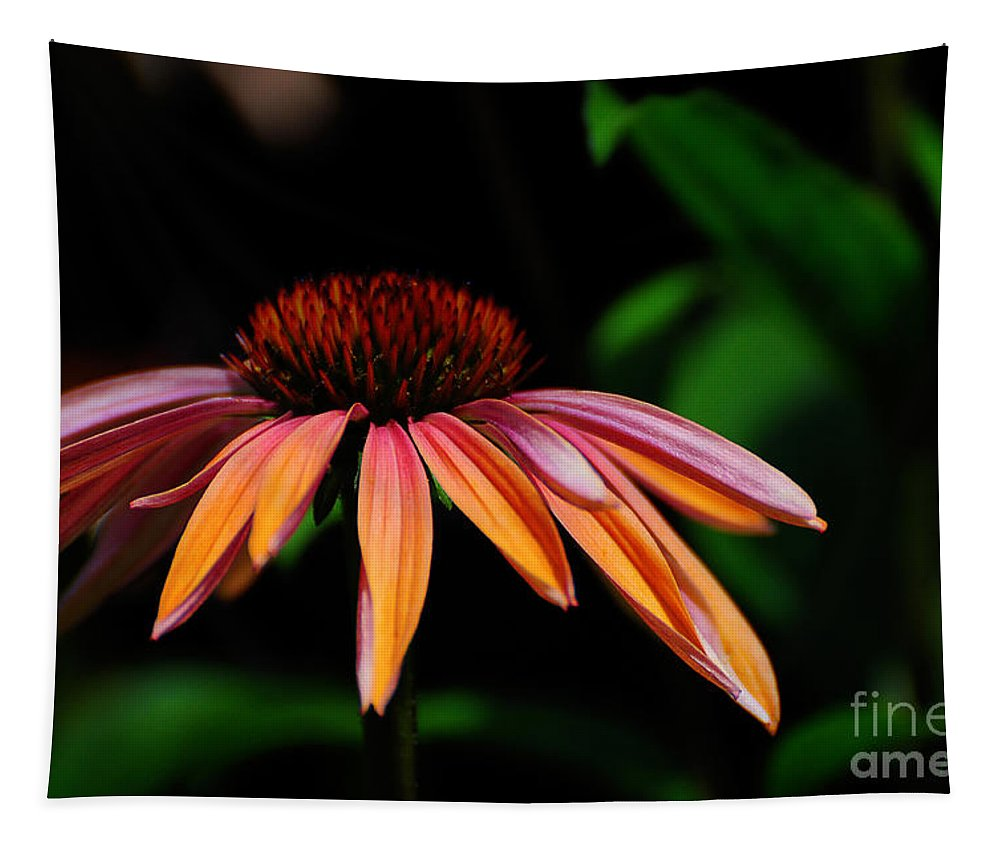 Flower Tapestry featuring the photograph In The Golden Hour by Lois Bryan