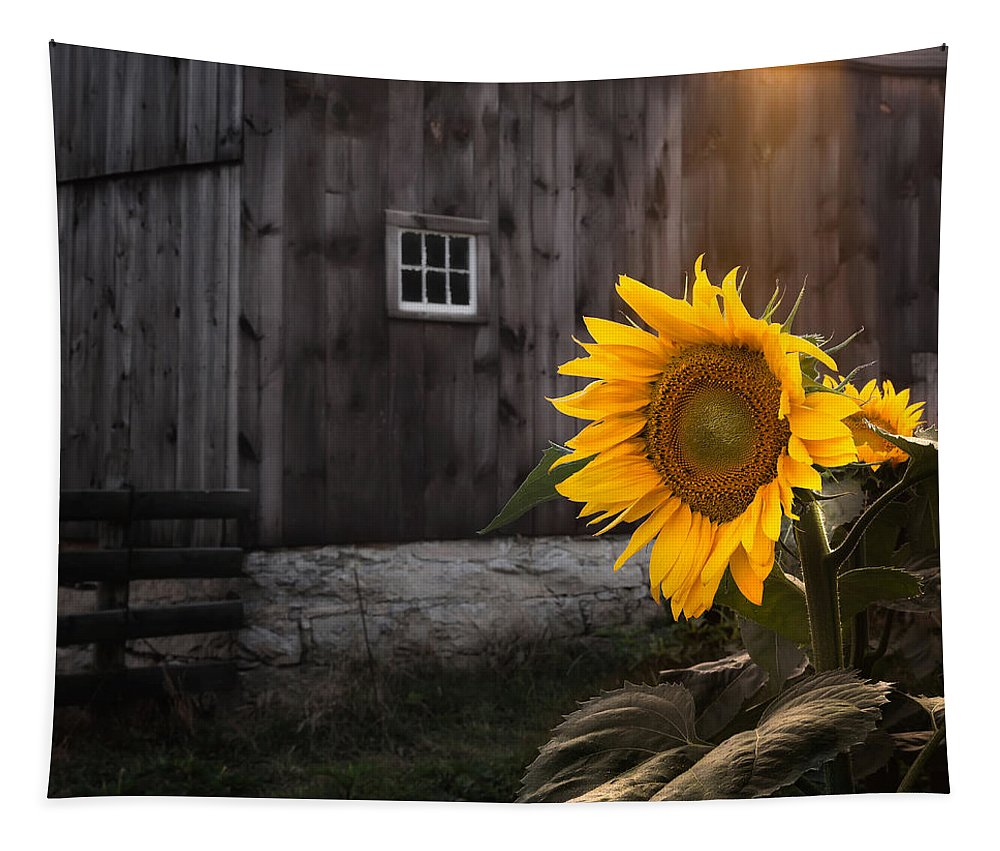 Sunflower Tapestry featuring the photograph In The Light by Bill Wakeley
