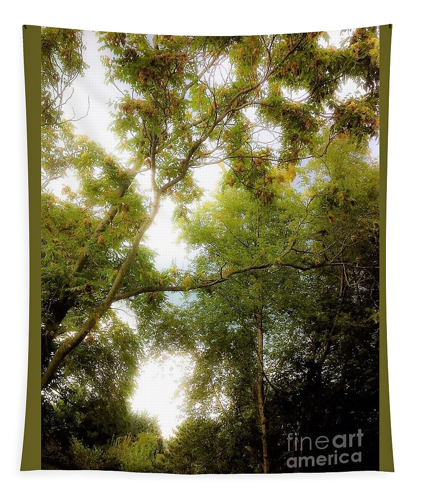Nature Tapestry featuring the photograph In The Summer Time When The Weather Was Fine by Debra Lynch