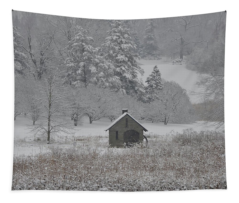 In The Tapestry featuring the photograph In The Winter At Morris Arboretum - Philadelphia by Bill Cannon