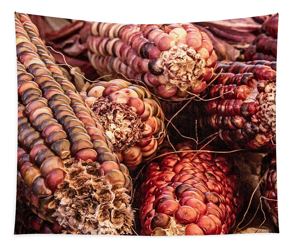Indian Corn Tapestry featuring the photograph Indian Corn by Bill Gallagher