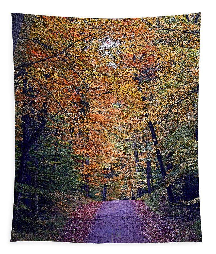 Country Road Tapestry featuring the photograph Into Fall by Tony Beaver