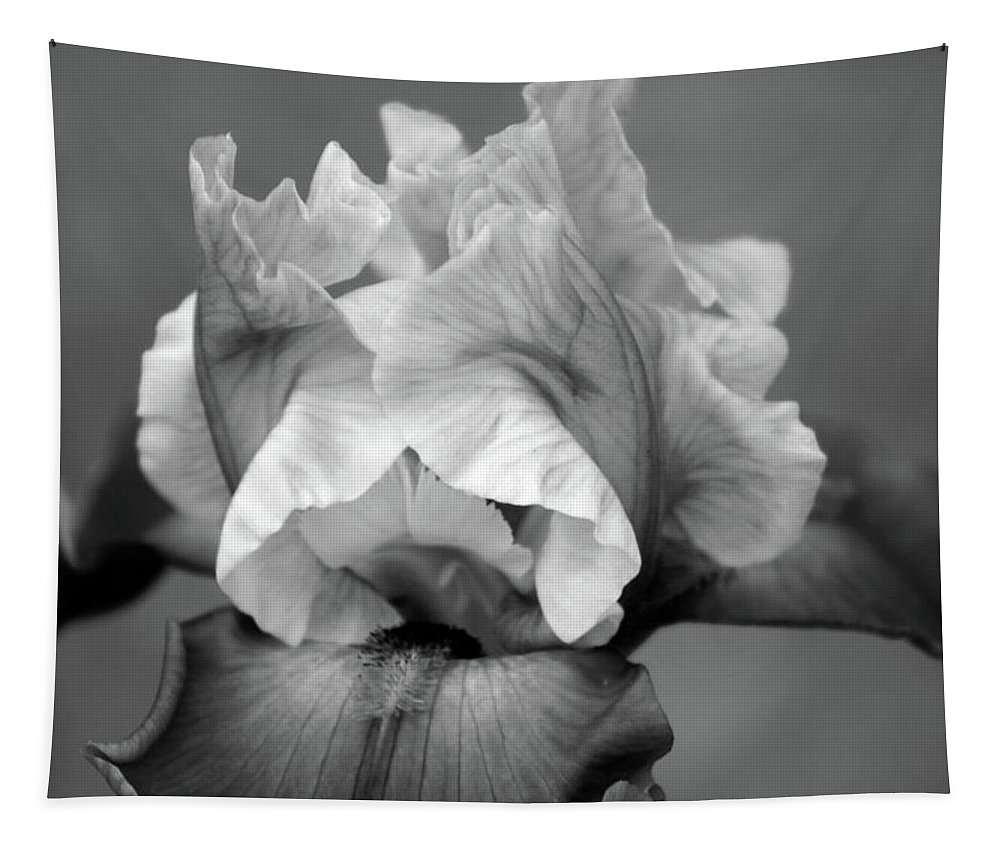 Black And White Tapestry featuring the photograph Iris 6622 H_4 by Steven Ward