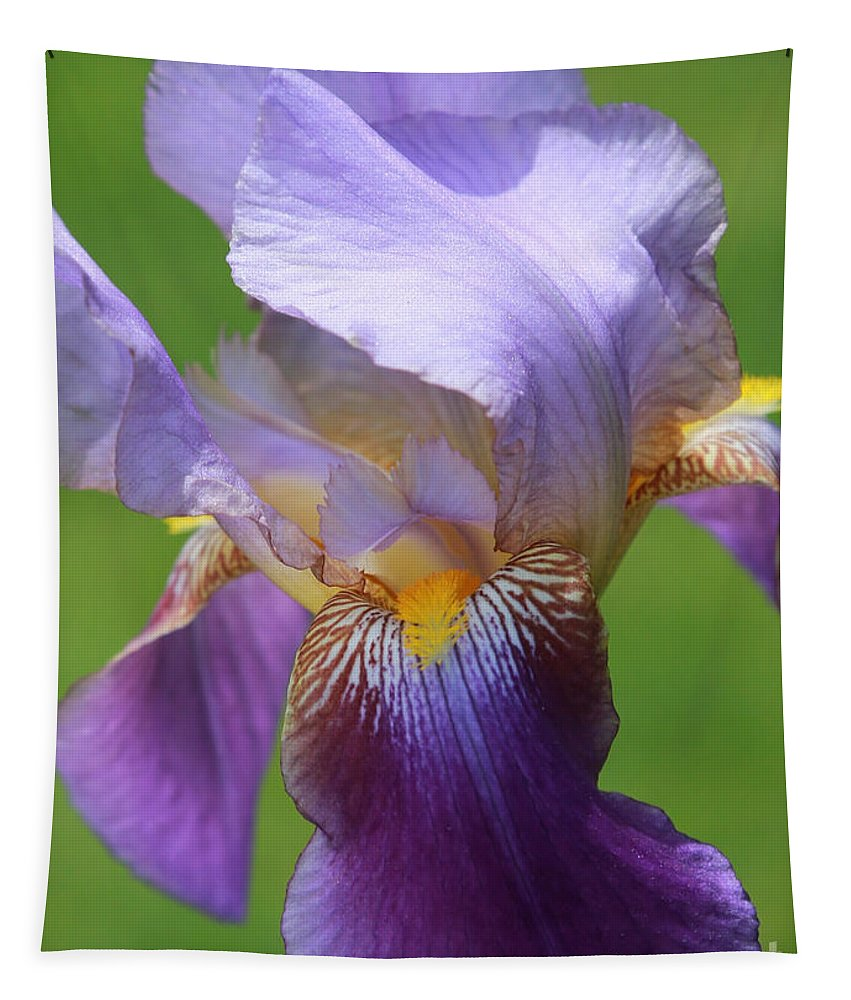 Iris Tapestry featuring the photograph Iris Spirit by Carol Groenen