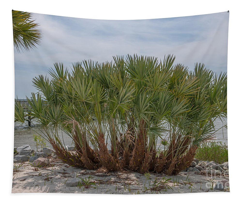 Island Tapestry featuring the photograph Island Palms by Dale Powell