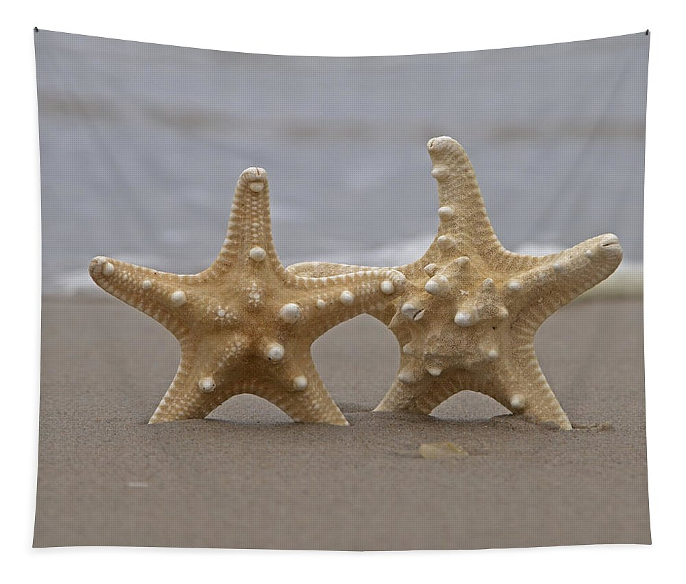 Starfish Tapestry featuring the photograph I've Got Your Back by Betsy Knapp