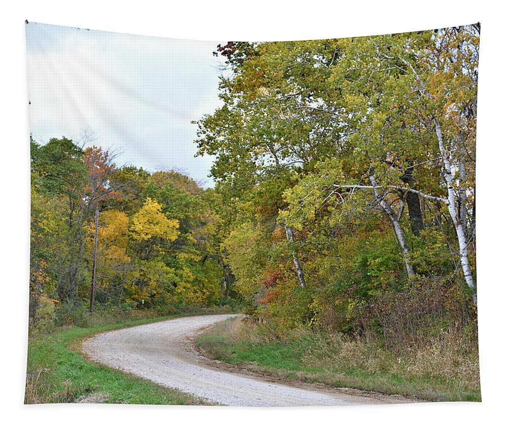 Road Tapestry featuring the photograph Jackson Avenue by Bonfire Photography