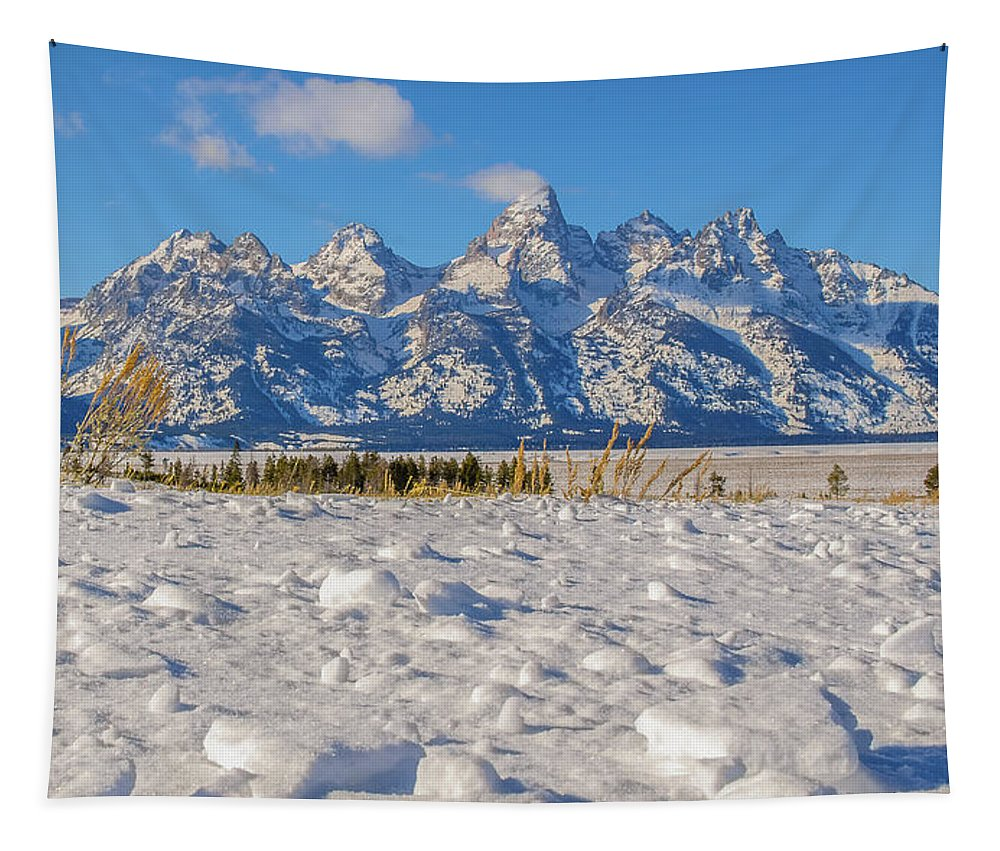 Grand Teton Mountain Range Tapestry featuring the photograph January At The Tetons by Yeates Photography