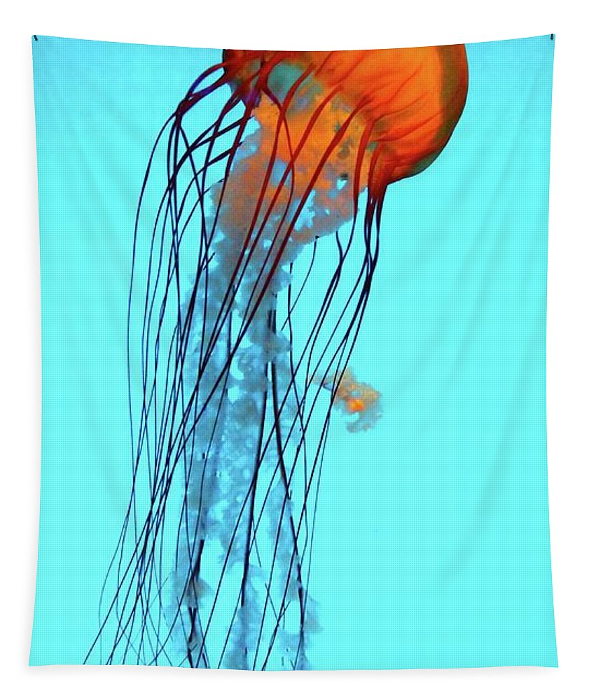 Aquarium Tapestry featuring the photograph Jellyfish by Robert McCulloch
