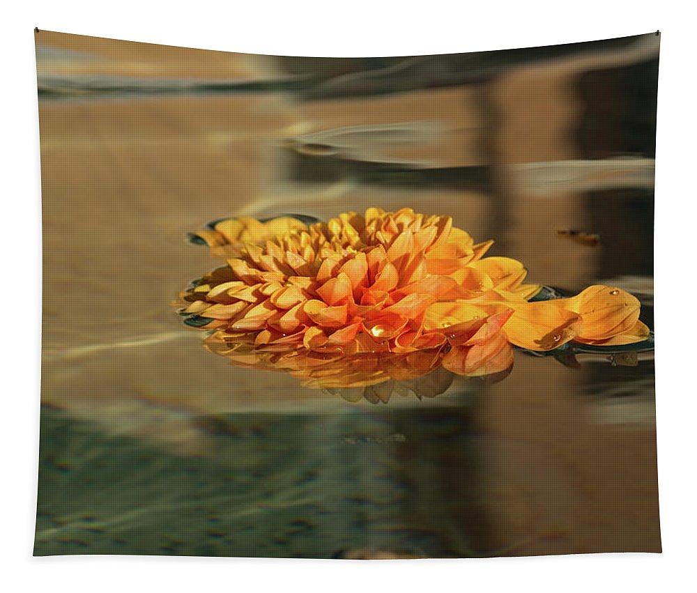 Georgia Mizuleva Tapestry featuring the photograph Jewel Drops - Orange Chrysanthemum Bloom Floating In A Fountain by Georgia Mizuleva
