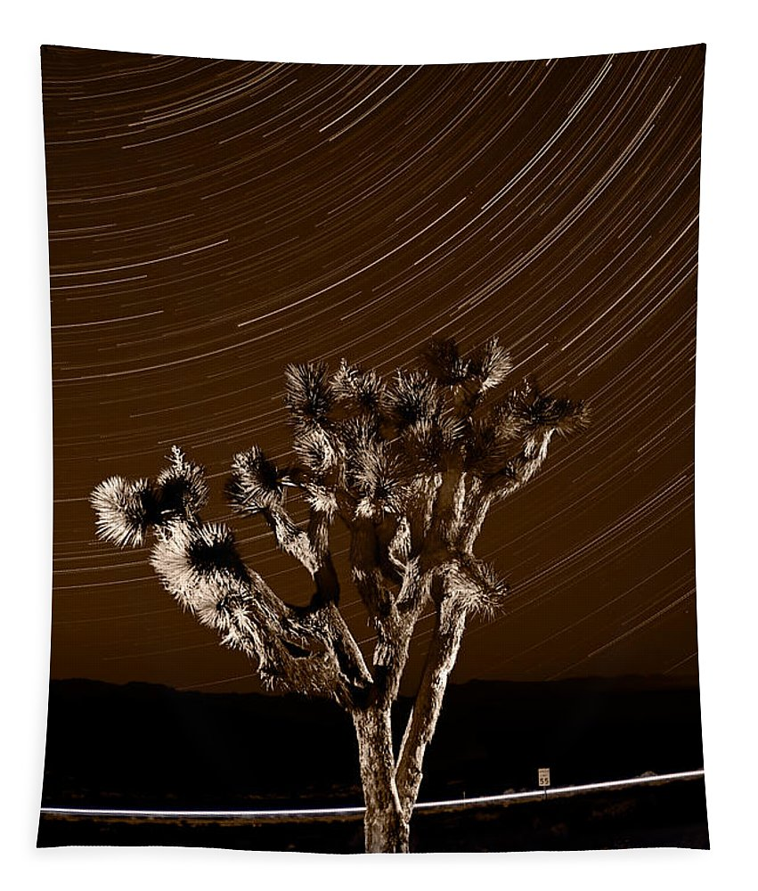 California Tapestry featuring the photograph Joshua Tree Night Lights Death Valley Bw by Steve Gadomski