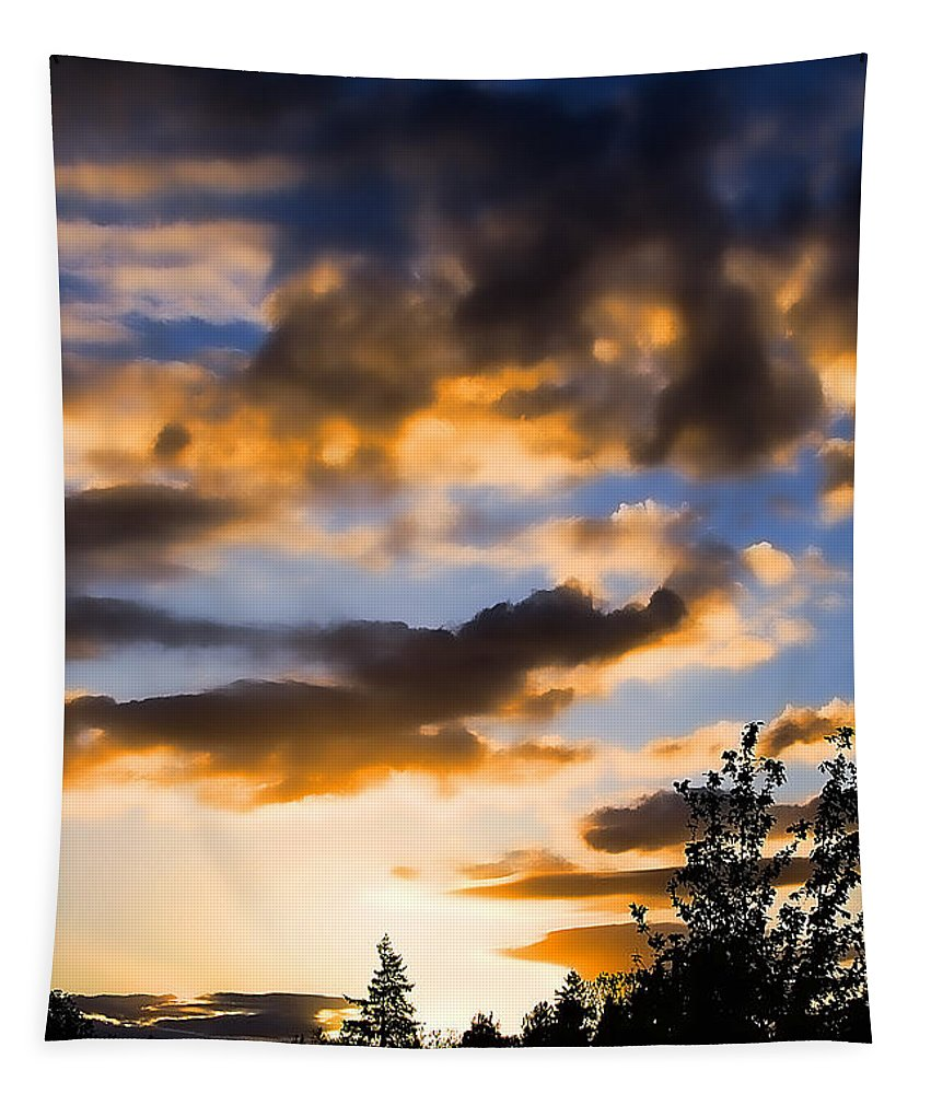 Sunset Tapestry featuring the photograph June Sunset by David Patterson