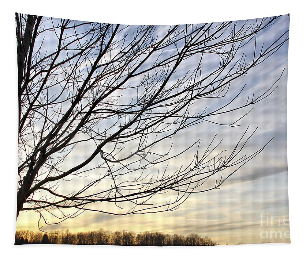 Sky Tapestry featuring the photograph Just A Tree And Clouds by Deborah Benoit