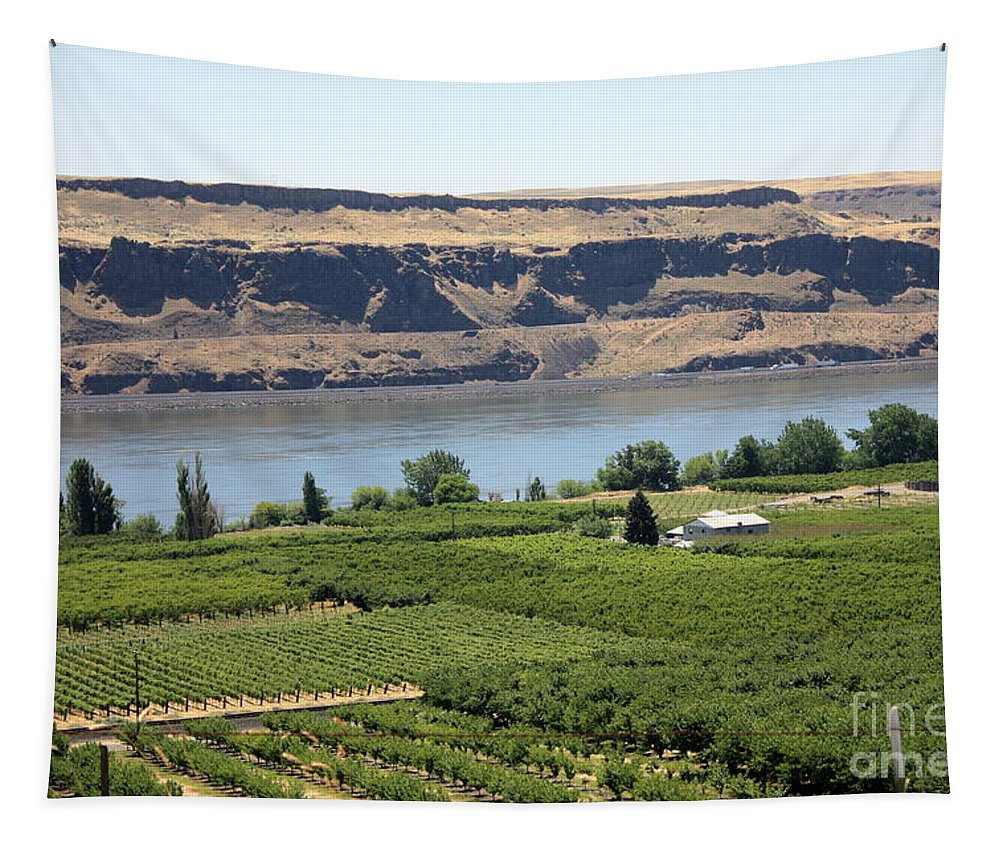 Columbia River Gorge Tapestry featuring the photograph Just Add Water... by Carol Groenen