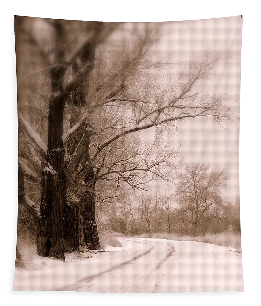 Winter Tapestry featuring the photograph Just Around The Bend by Carol Groenen