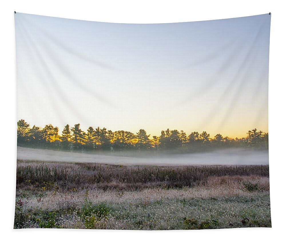 Just Tapestry featuring the photograph Just Before Dawn At Valley Forge by Bill Cannon