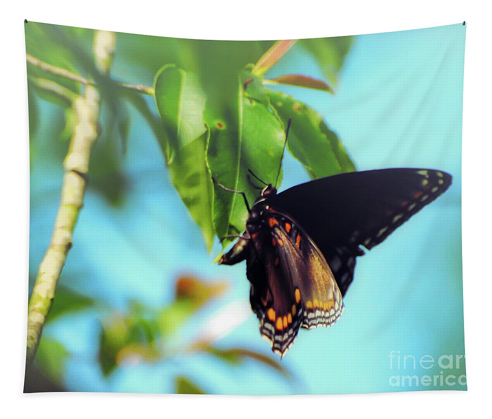 Butterfly Tapestry featuring the photograph Just Hanging Out - Red-spotted Purple Butterfly by Kerri Farley