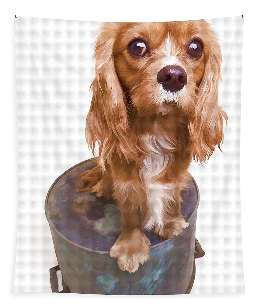 Dog Tapestry featuring the photograph King Charles Spaniel Puppy by Edward Fielding