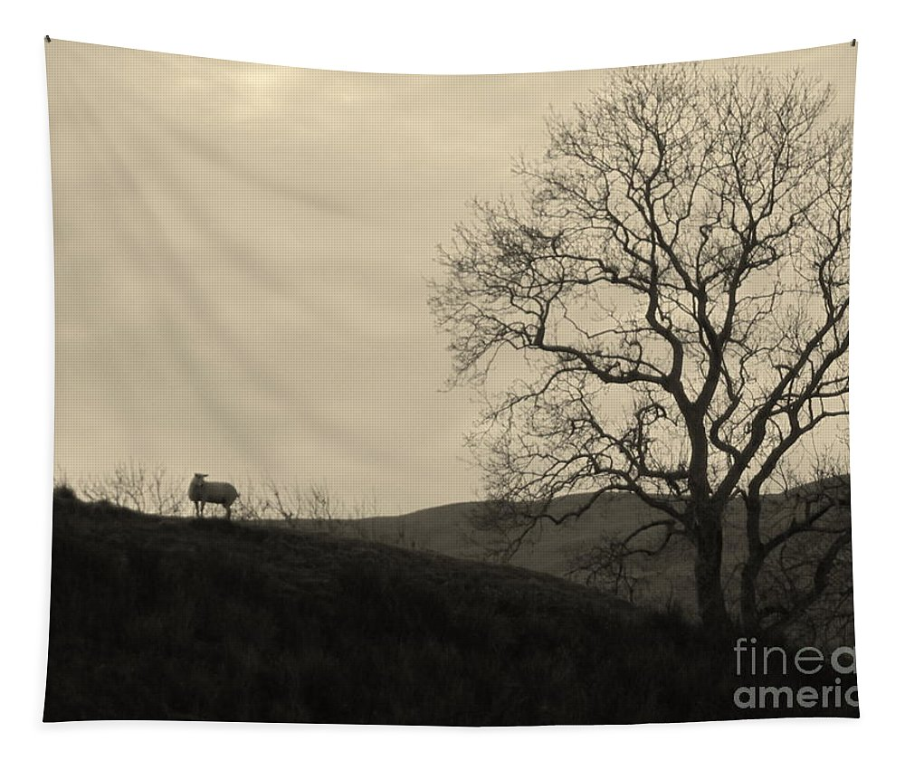 Sheep Tapestry featuring the photograph Kintyre Plus Nine by Peter McClure