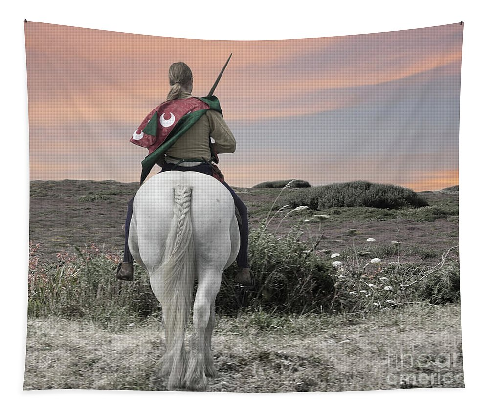 Knight Tapestry featuring the photograph Knight's Quest by Terri Waters
