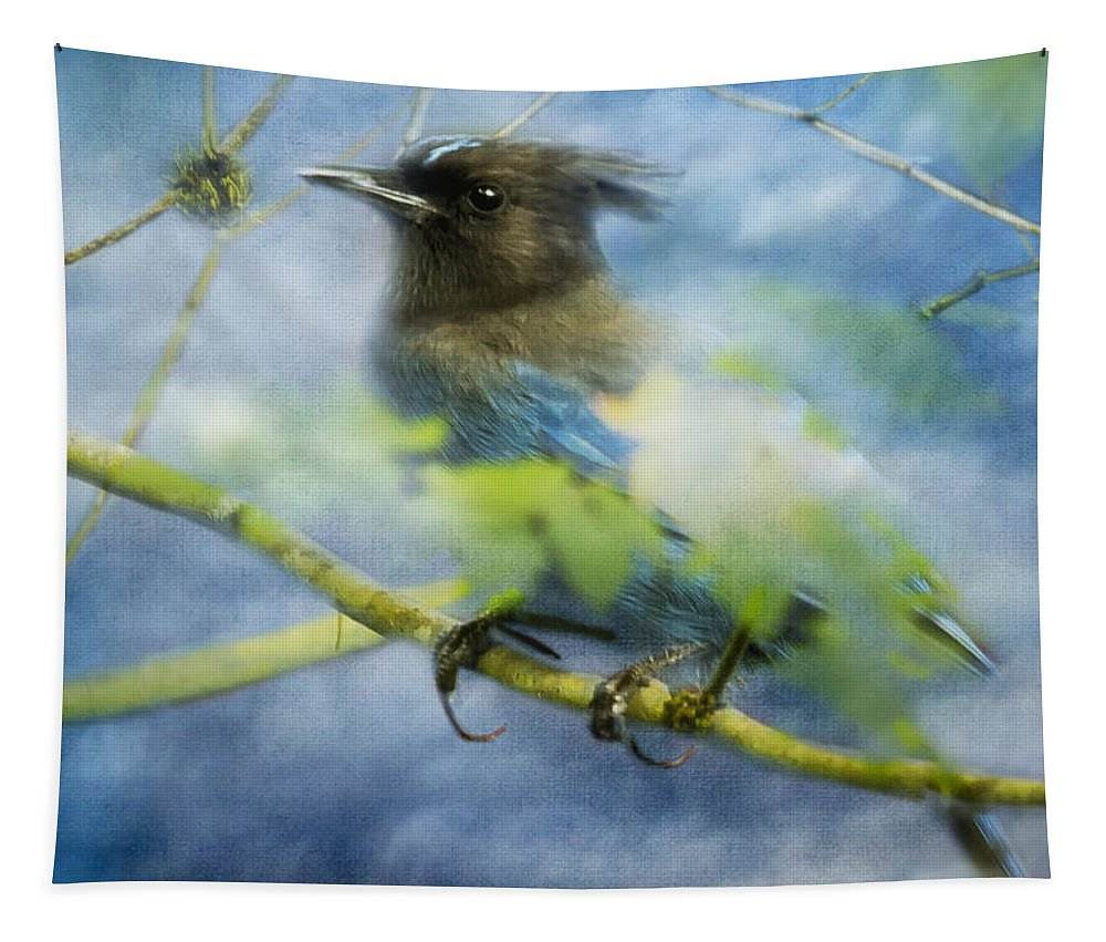 Steller's Jay Tapestry featuring the photograph Knowing It Has Wings by Belinda Greb