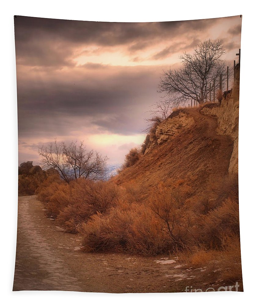 Trees Tapestry featuring the photograph Kvr Collection by Tara Turner