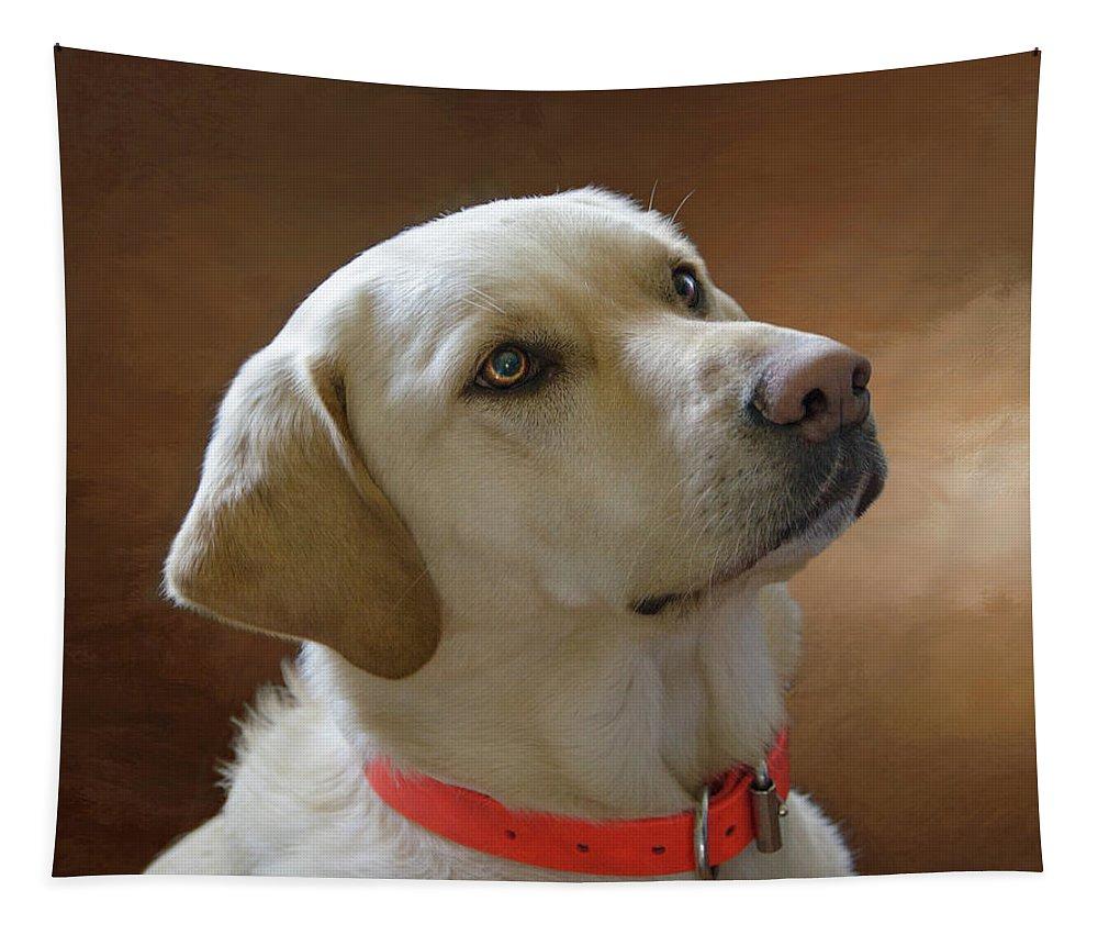 Labrador Retriever Tapestry featuring the photograph Labrador Retriever by Eleanor Bortnick