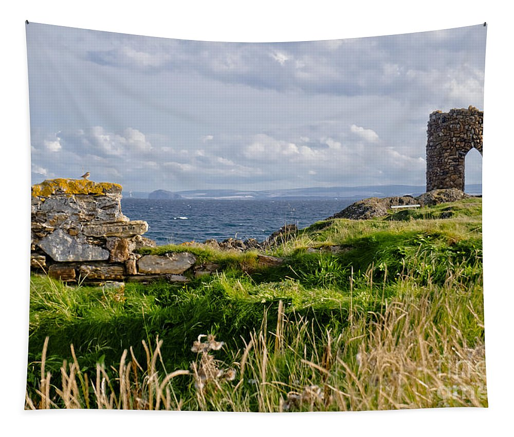 Ruins Of Lady's Tower Tapestry featuring the photograph Lady's Tower by Elena Perelman
