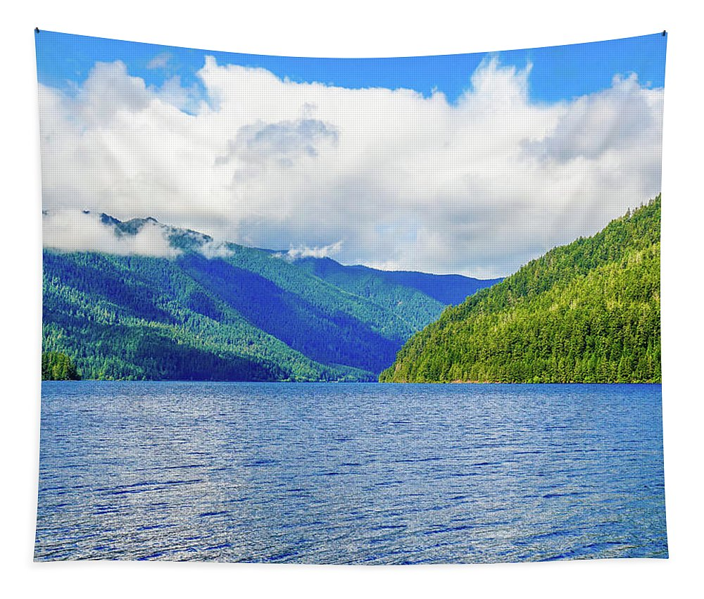 Lake Quinault Tapestry featuring the photograph Lake Quinault Washington by Dan Sproul
