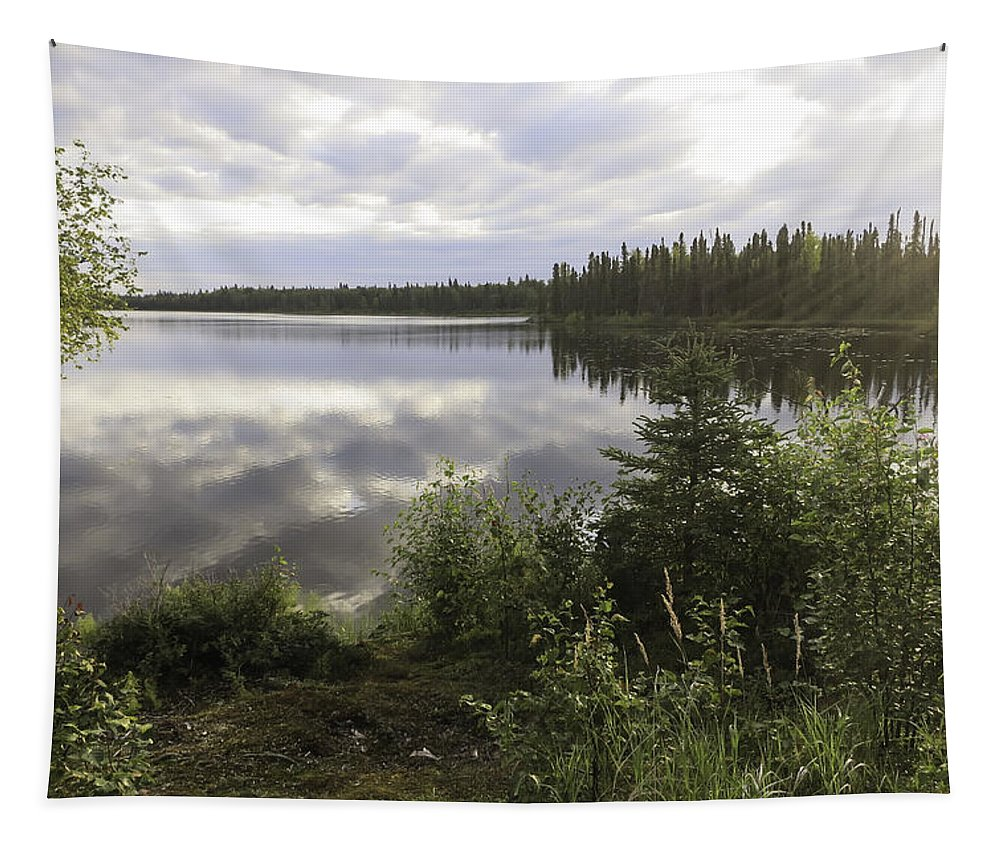 Lake Reflections Tapestry featuring the photograph Lake Reflections by Phyllis Taylor