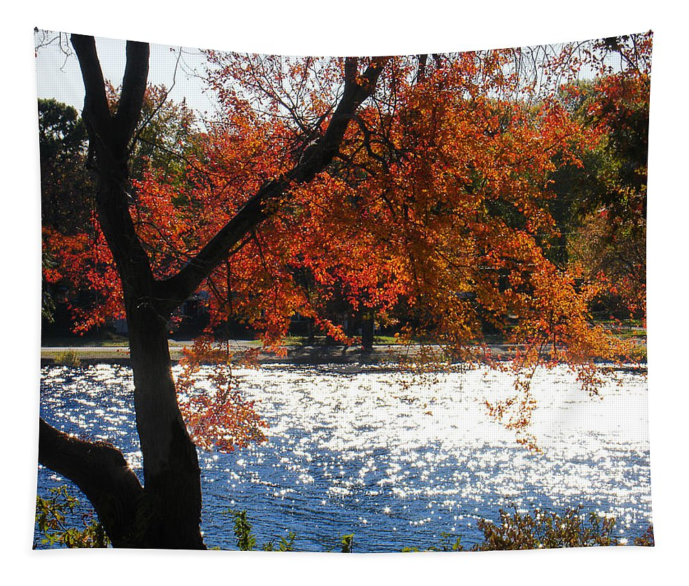 Landscape Tapestry featuring the photograph Lakewood by Steve Karol