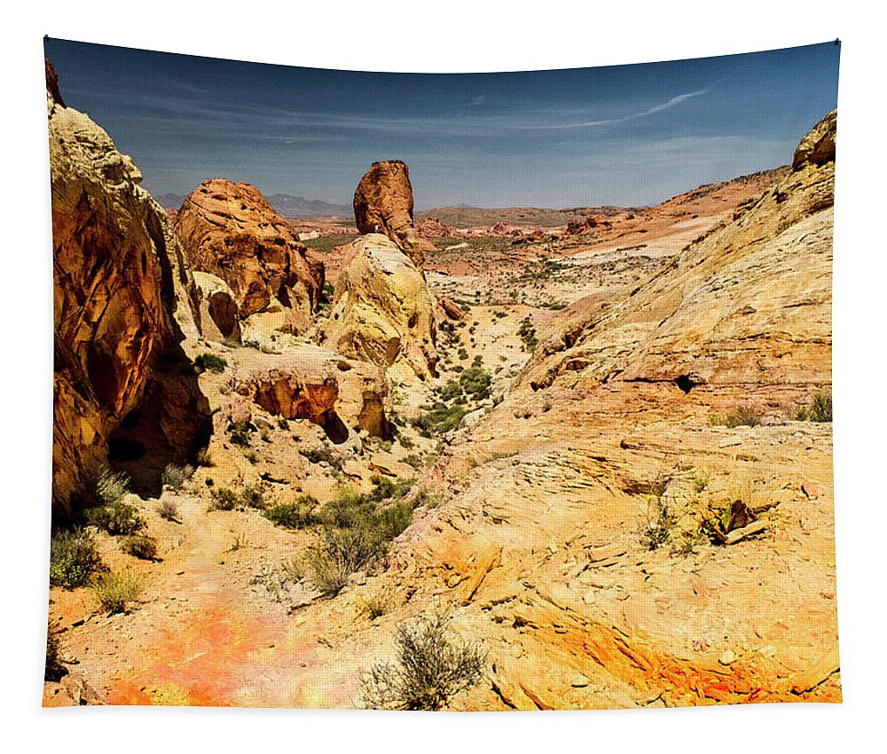 Landscape Tapestry featuring the photograph Land Of Sandstones Valley Of Fire by Frank Wilson