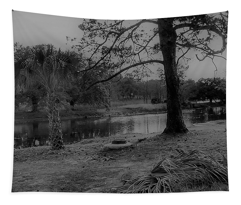 Photography Tapestry featuring the digital art Langan Park In Black And White by Marian Bell