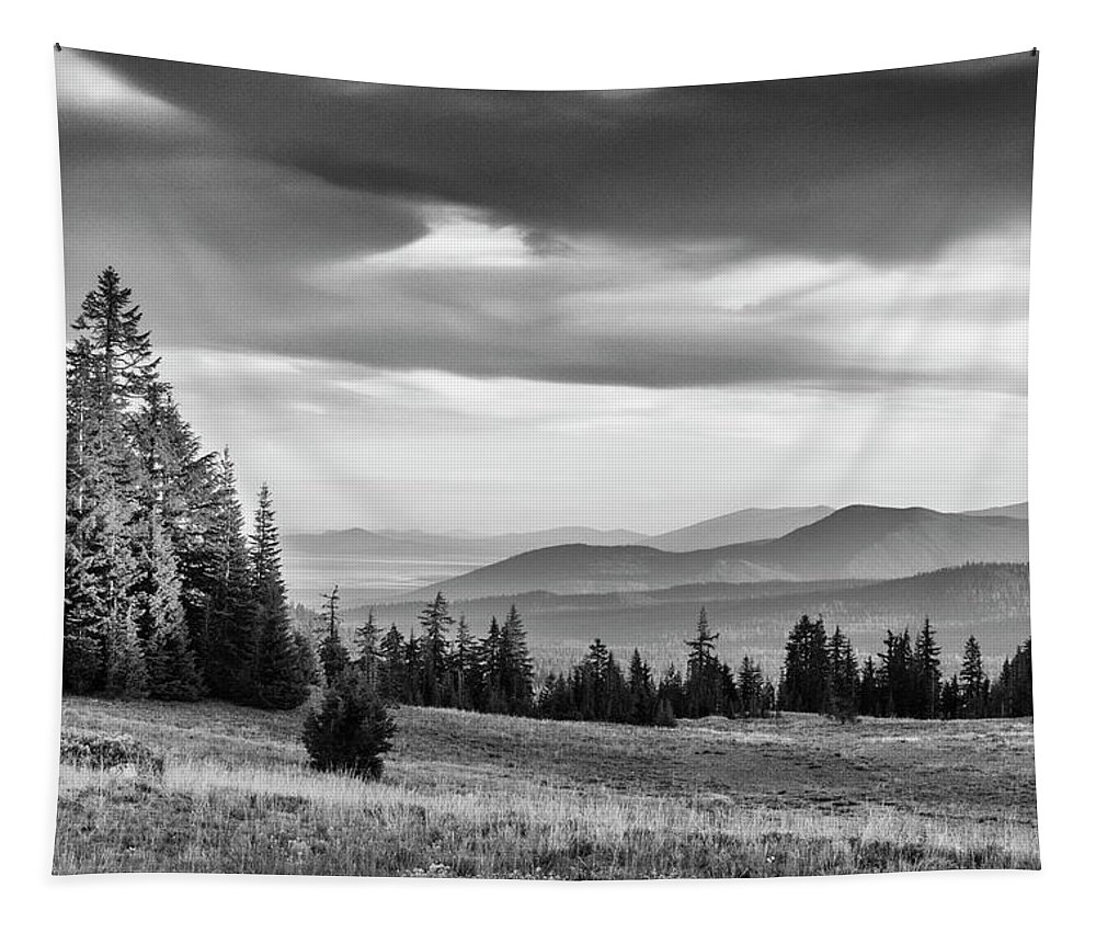 Meadows Tapestry featuring the photograph Last Light Of Day In Bw by Frank Wilson