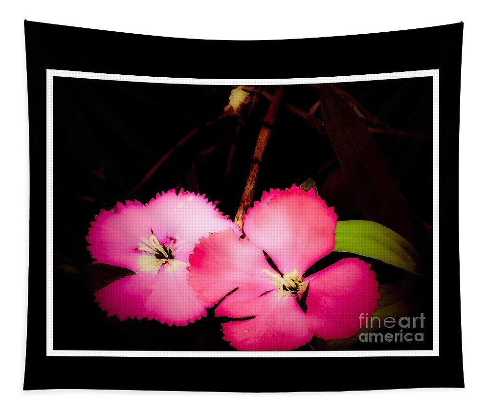 Flowers Tapestry featuring the photograph Last Of The Pink Dianthus Flowers by Debra Lynch