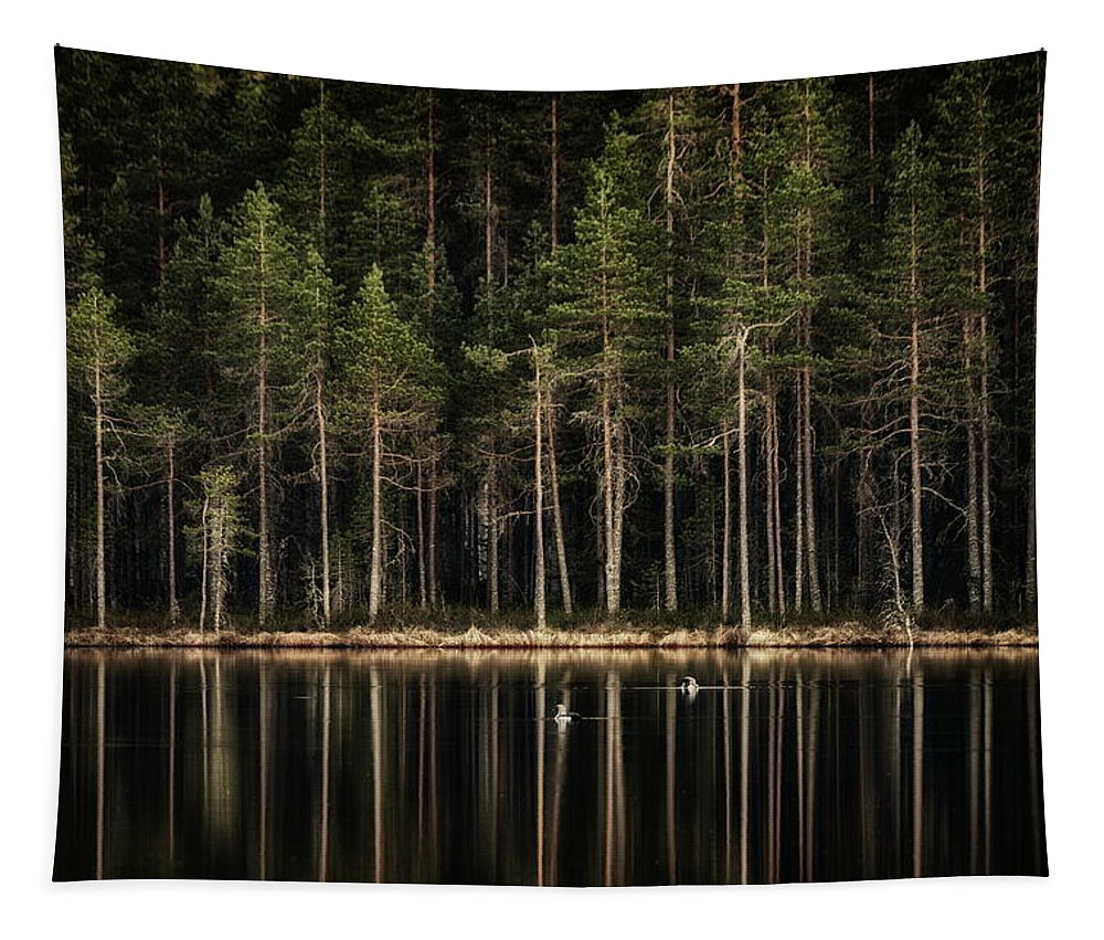 Finland Tapestry featuring the photograph Late Loons by Jouko Lehto