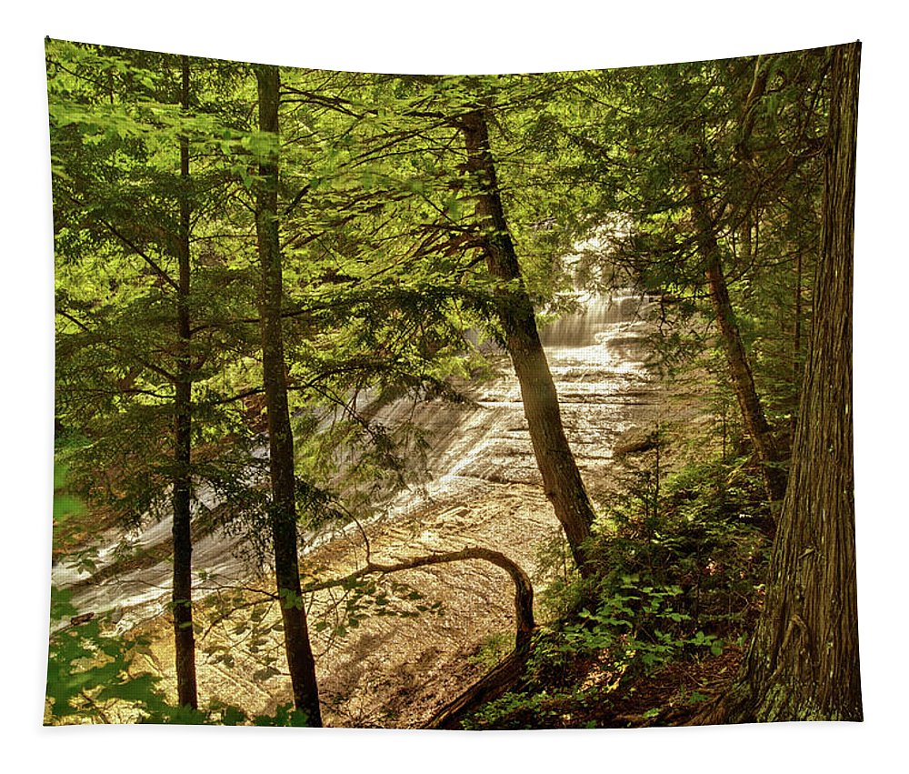 Laughing Whitefish Tapestry featuring the photograph Laughing Whitefish Falls 2 by Michael Peychich