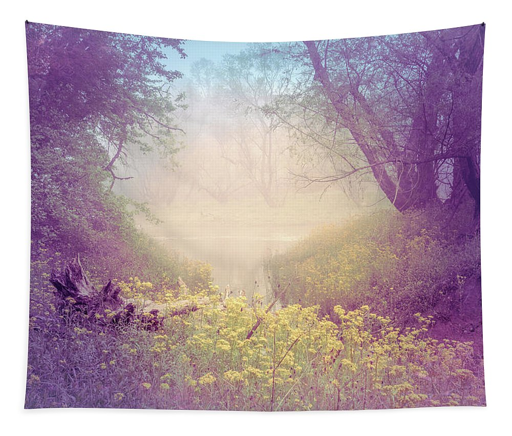 Appalachia Tapestry featuring the photograph Lavender Dreams by Debra and Dave Vanderlaan